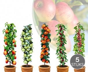 Set Van 5 Of 10 Fruitbomen - Pakket Met Appel, Peer, Kers, Pruim En Perzik!