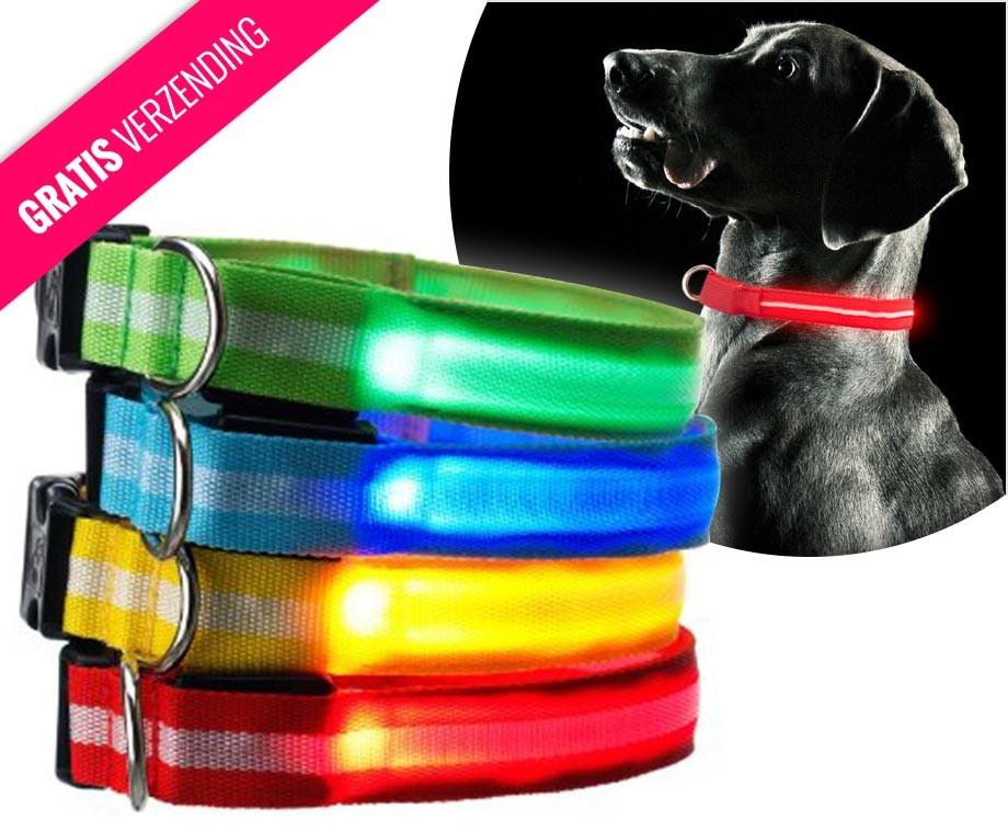 https://www.voordeelvanger.nl/media/catalog/product/cache/1/thumbnail/9df78eab33525d08d6e5fb8d27136e95/l/e/led-honden-halsband.jpg