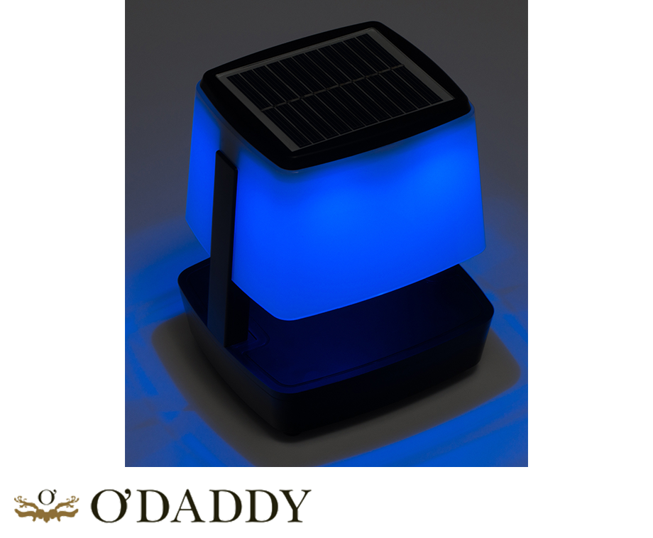 odaddy tafelspeaker met led verlichting gezien bij robs grote tuinverbouwing