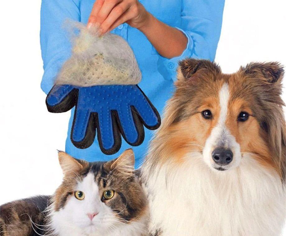 Hond en Kat Vacht Verzorgingshandschoen - Voor Gemakkelijk en Veilig Borste ...