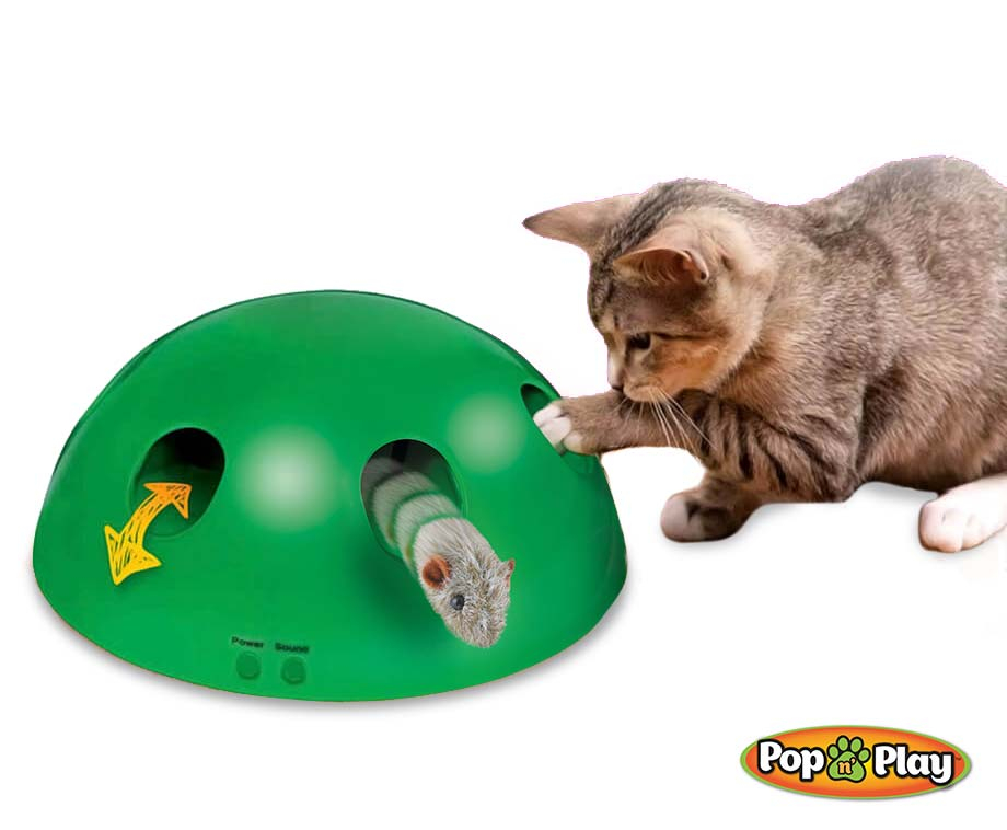 Pop 'n Play Interactief Kattenspeeltje - Voorkomt Verveling En...